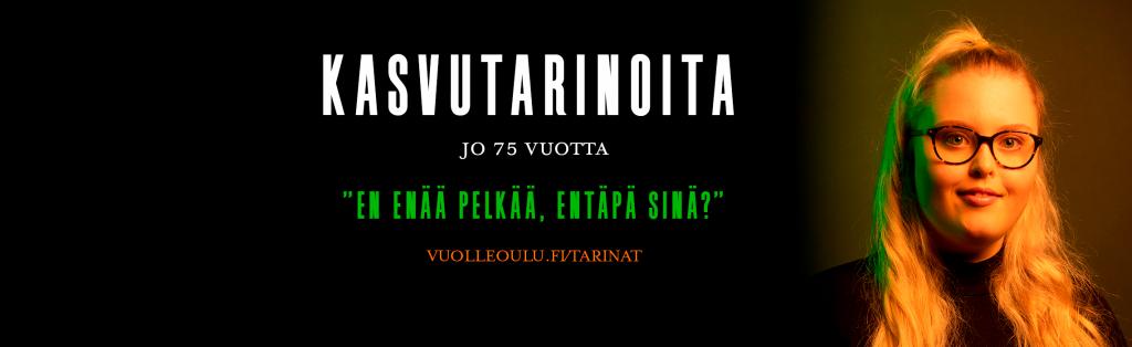 Vuolle Setlementti, Tyttöjen Talo, Oulu